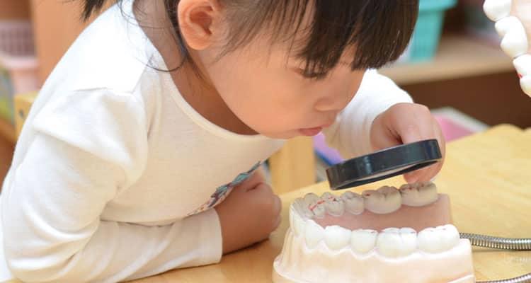 Investigación clínica: Comparación entre los métodos Demirjian y Nolla para la estimación de edad dental y un estudio individualizado en niños mexicanos de 6 a 14 años de edad